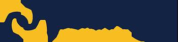 peerless network logo SMALL
